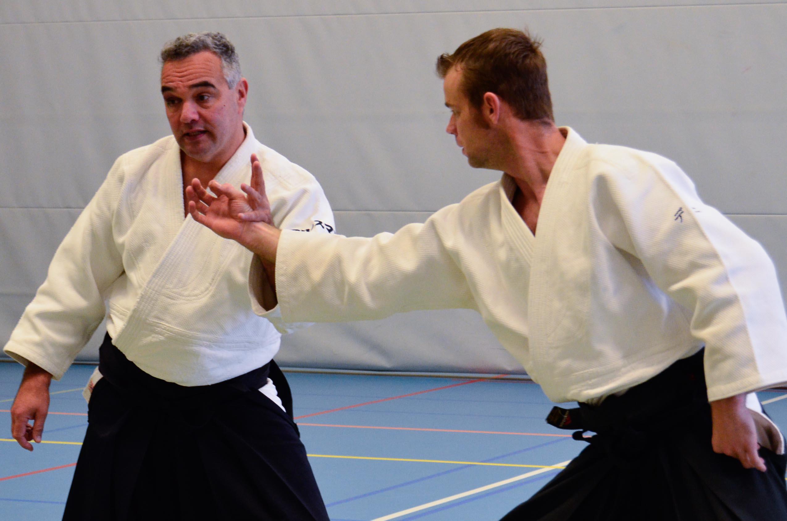 Aikido Centrum Rotterdam: Open Dag 2013 met stage Wilko Vriesman dd 23-11-2013
