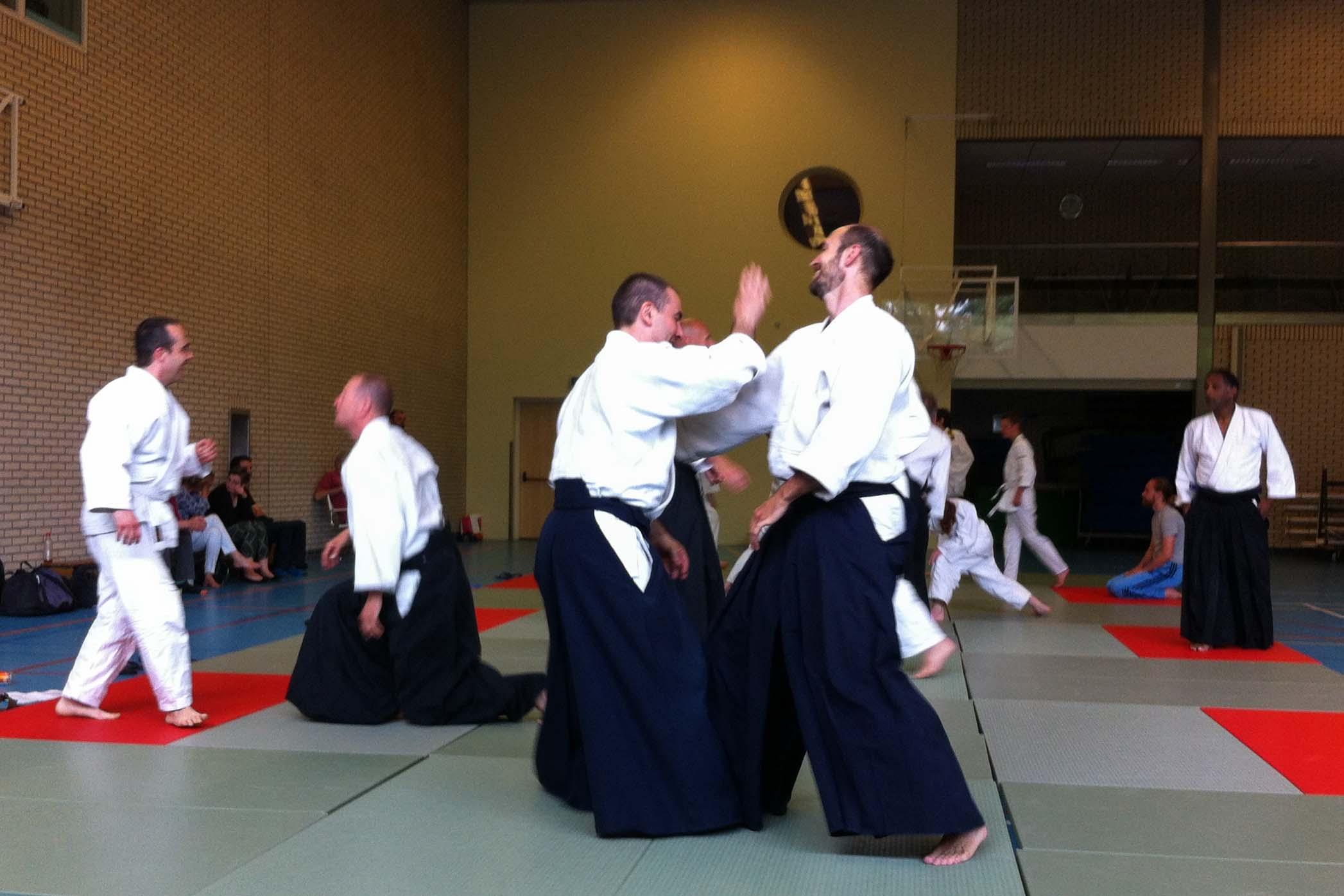Aikido Centrum Rotterdam Examendag 2015 d.d. 28-6-2015